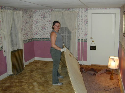 Craft Room - Removing Carpet